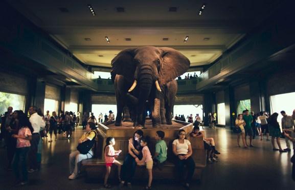 Hadoop, big data, and the elephant in the room   VentureBeat