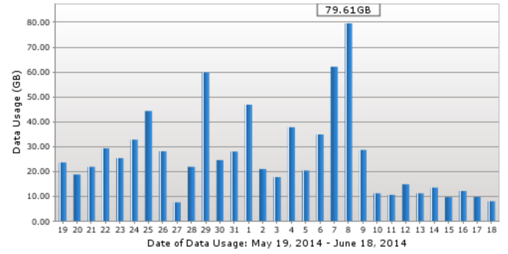 A graph showing Tyler Hayes' daily data usage.