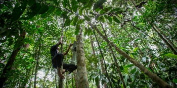 Rainforest-monitoring project hits Kickstarter goal early, ups the ante with tribal deals