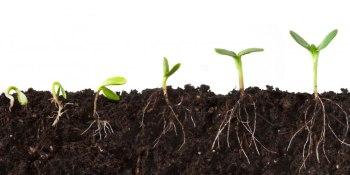 Marketing rockstars from Facebook, Walmart, Zappos, & more join GrowthBeat lineup