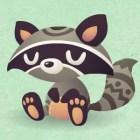 Placid Raccoon