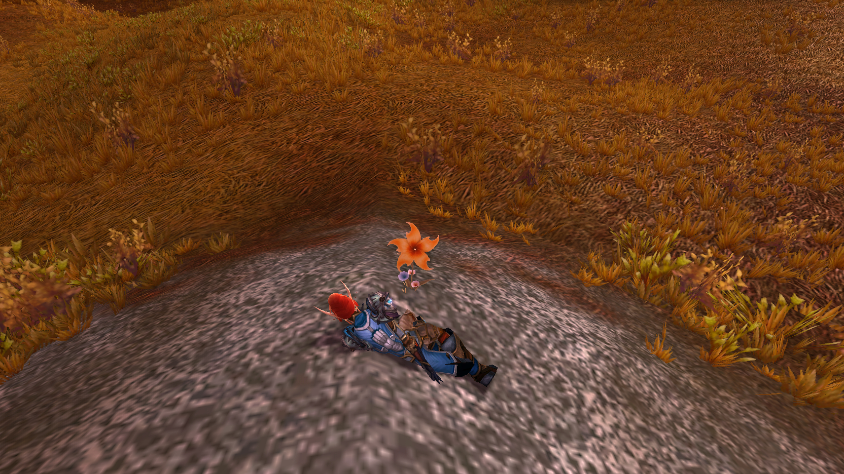 Welcome to the Toy Box: The 5 wackiest items in Warcraft