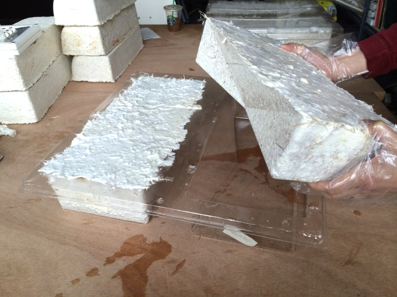 The organically-grown bricks used by The Living to make Hy-Fi.