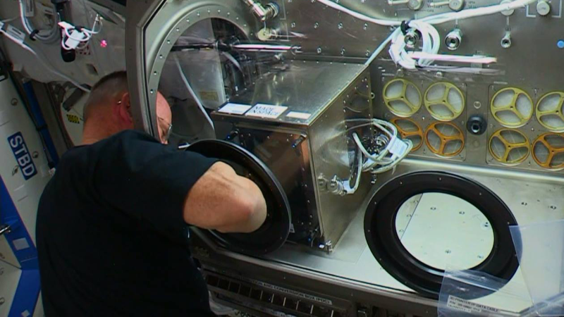 ISS Commander Wilmore reaches into the 3D printer to retrieve the wrench.
