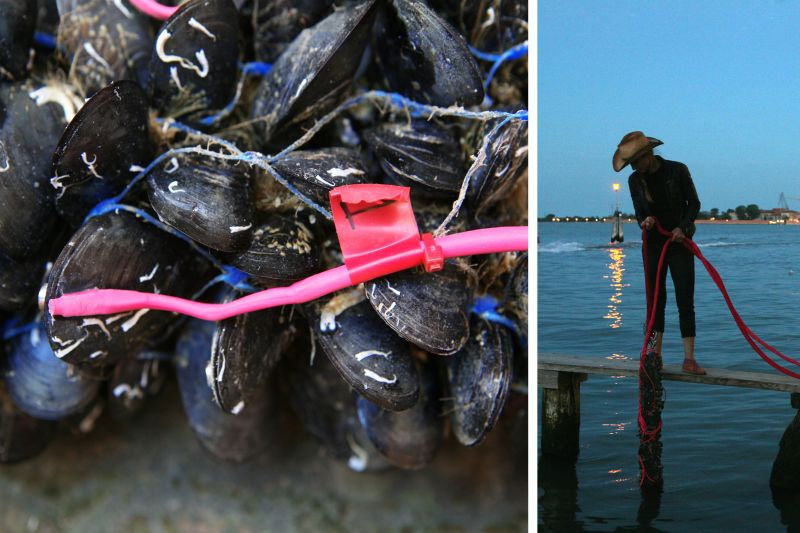 One of The Living's new projects is a floating pier that utilizes mussels to evaluate water quality.