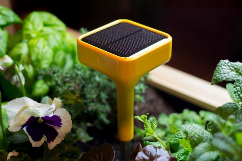 The Edyn smart garden gadget
