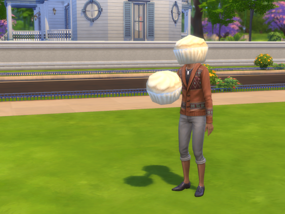 The Sims 4 bug