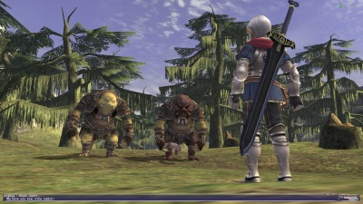 Final Fantasy Xi Gets One Last Scenario Before Shutting Down On Ps2
