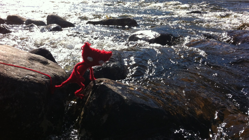 Yarny crossing a river during Sahlin's camping trip.