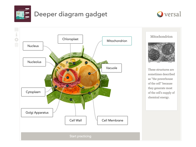 Versal gadget example- Deeper Diagram