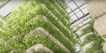 IoT for food and water: Here's what the future looks like