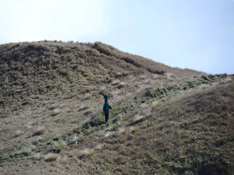 The grassy hillsides of Mount Pulag