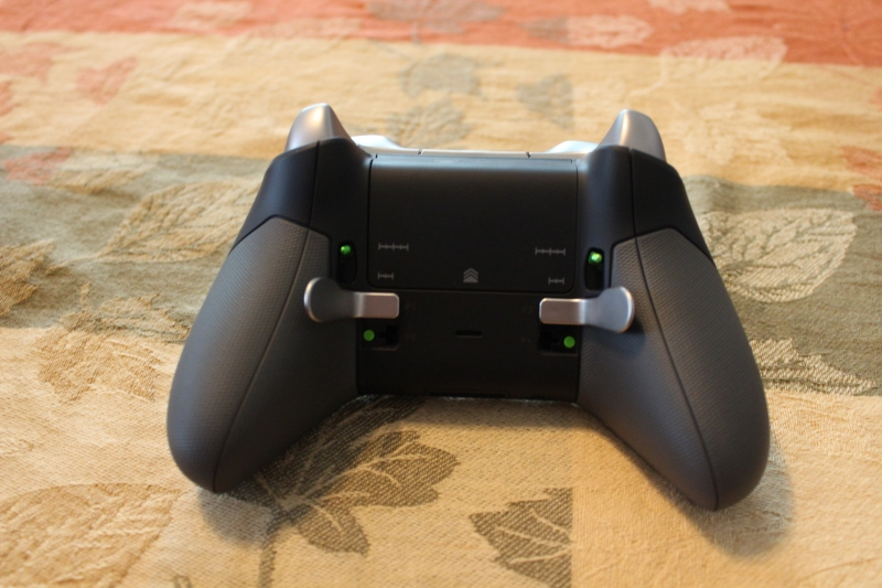 Using only two of the back paddles as shifters for Forza Motorsport 6.