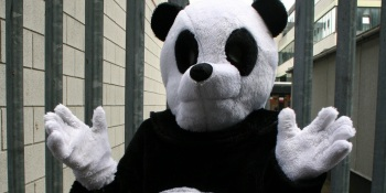 Pandas suits and drive-bys: Do's and don'ts for pitching investors