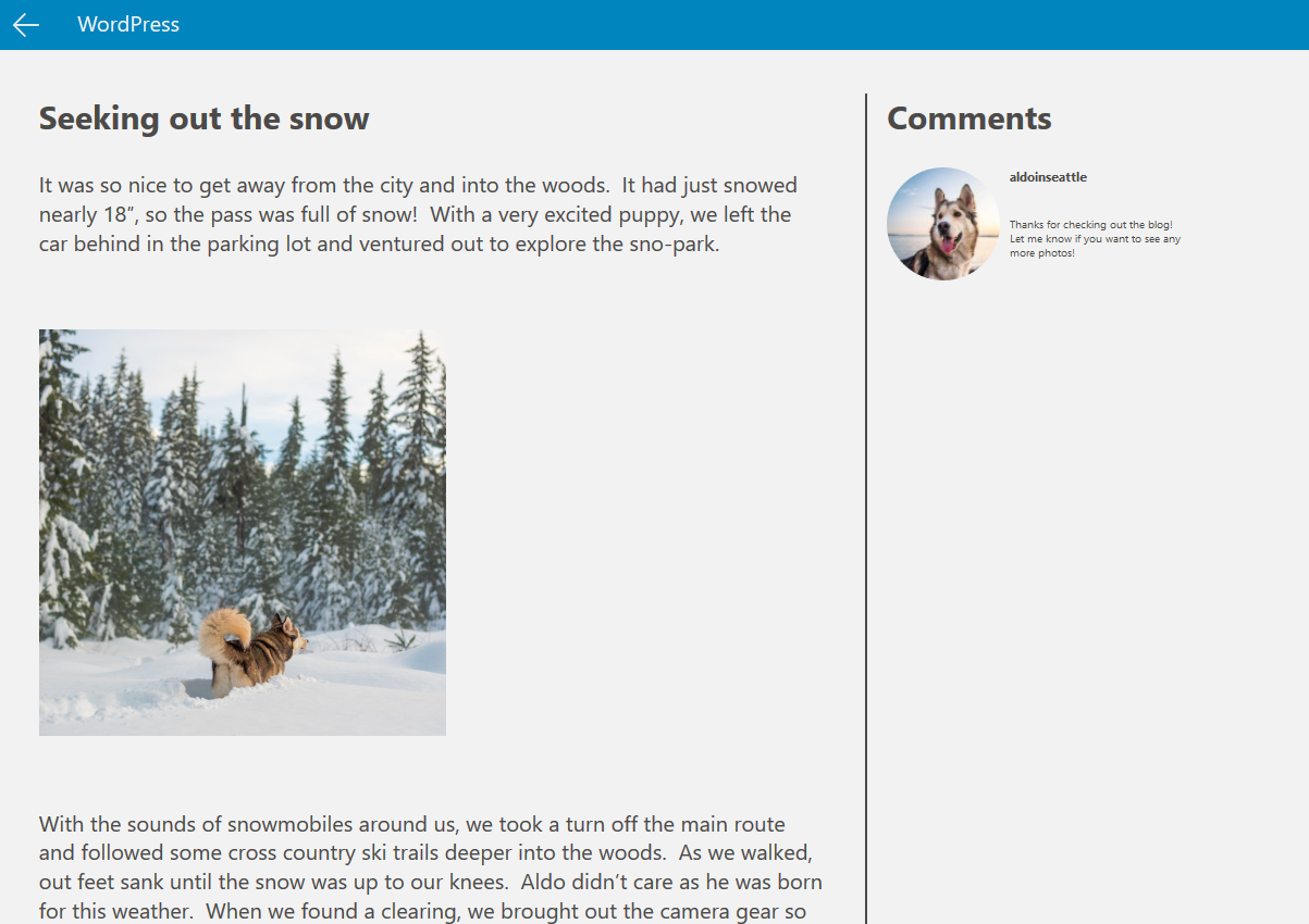 An example of the WordPress template in Microsoft's Windows App Studio.