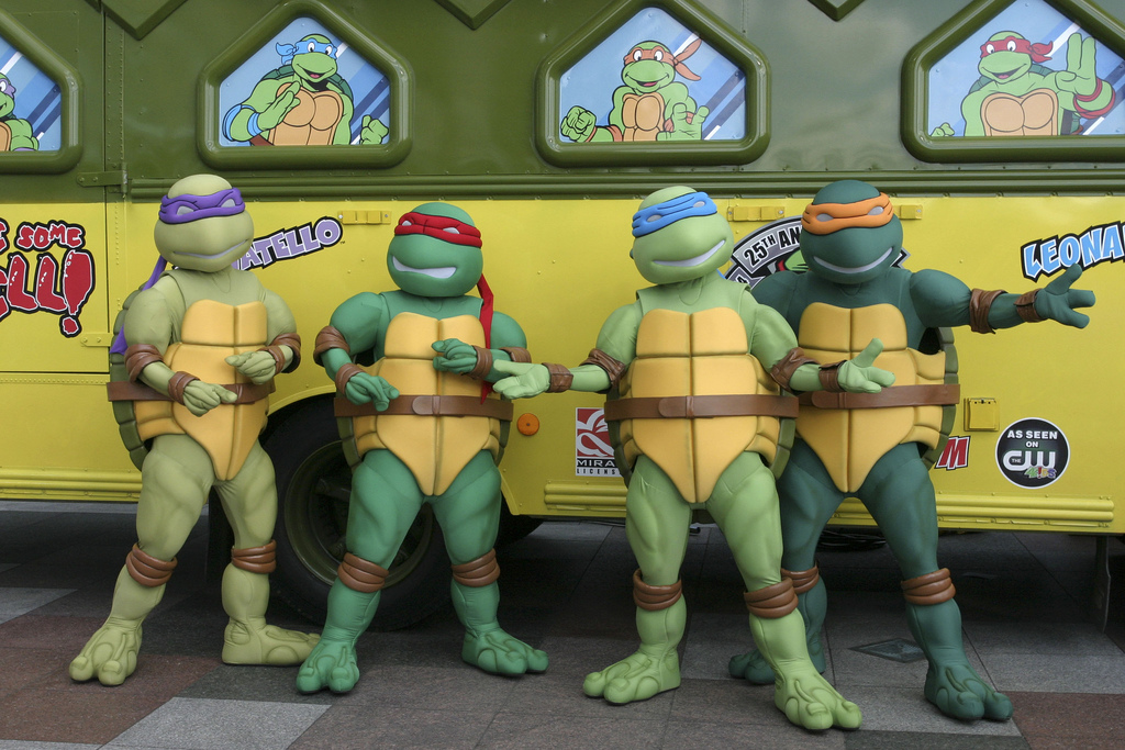 Turtle power.
