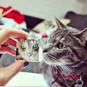 Boomf lets users upload photos via Instagram and Facebook. It also supports custom designs and text.