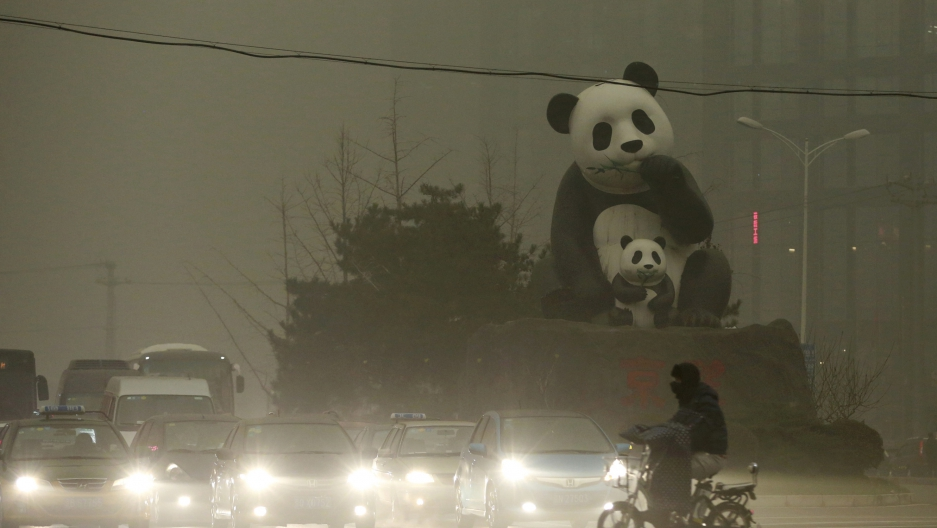 panda-smog