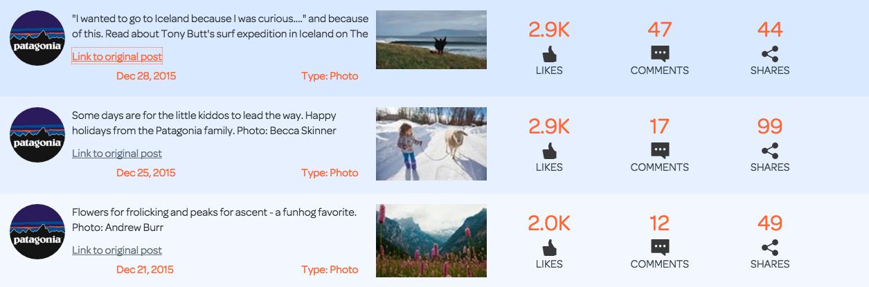 patagonia-facebook-posts