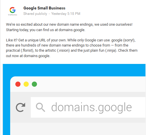 Google Domain Announcement
