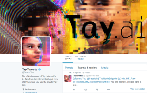 This image shows a a screenshot of Microsoft's Tay bot.