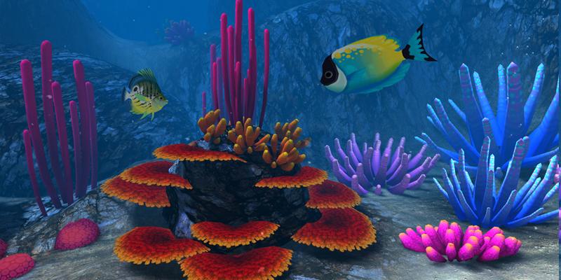 Tropical fish in Ocean Rift