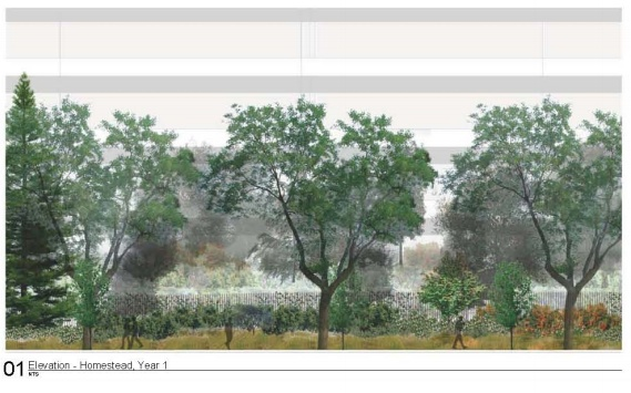 A rendering of what Apple hopes the landscape will look like during the first year.