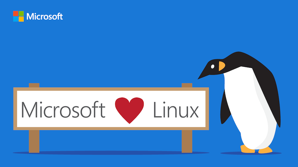 Microsoft's Linux enthusiasm may not help open source