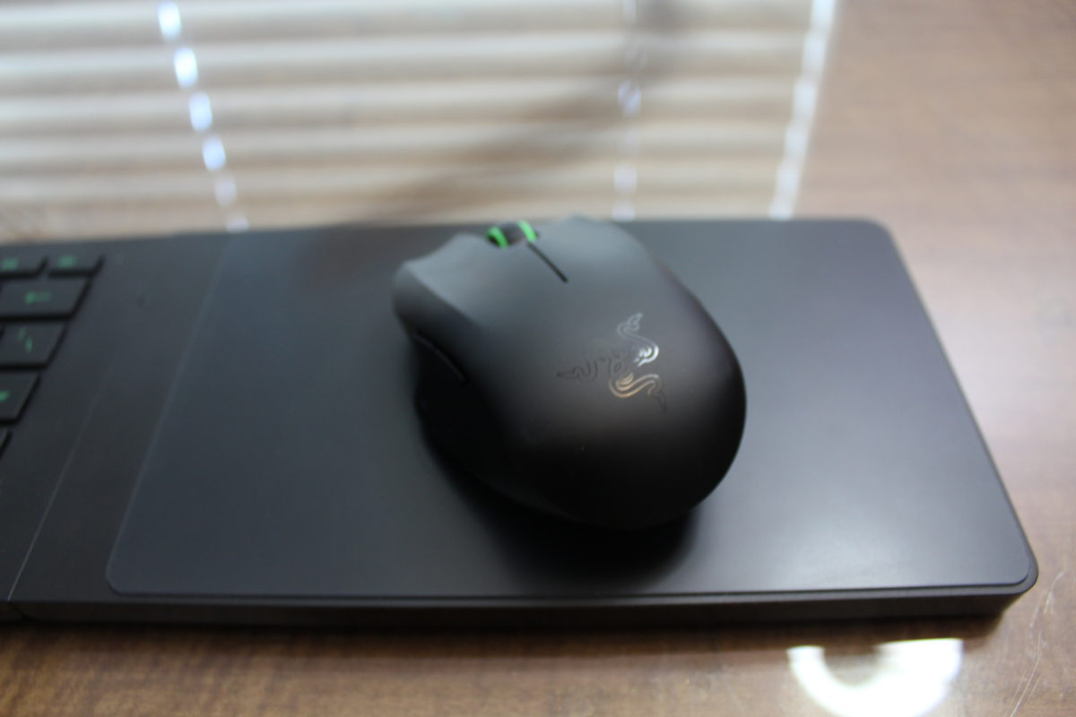 The mouse looks nice and clean on the top, but it's underside collects dust like crazy.
