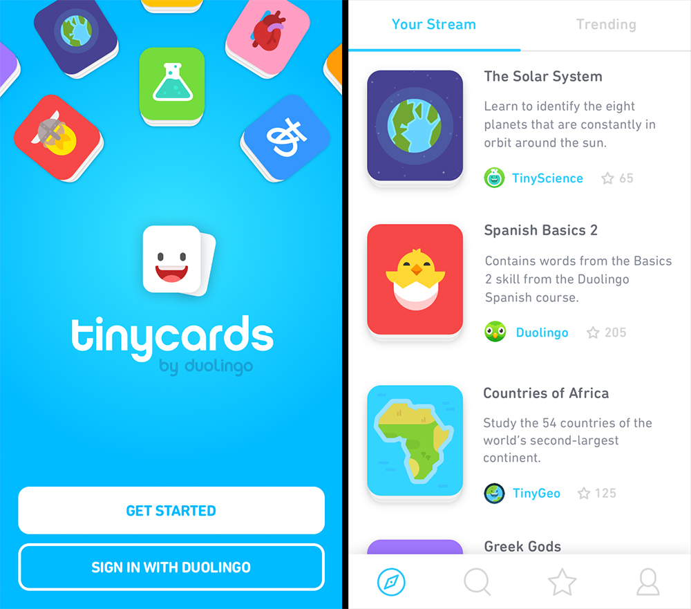 duolingo tinycard screens 1
