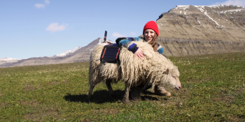 Google helps Faroe Islanders map their islands for Street View using sheep, kayaks, and more