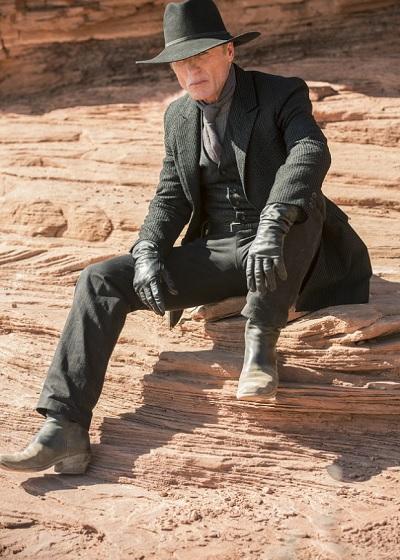 Ed Harris isn't the best-behaving person in Westworld.