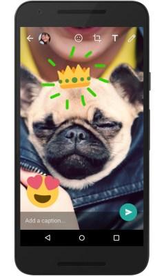 WhatsApp creative camera features