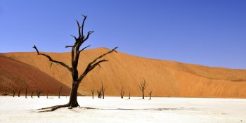 Today's VC funding drought will drive tomorrow's adtech consolidation