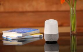 The Google Home personal assistant.