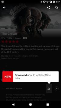 Netflix: Downloading