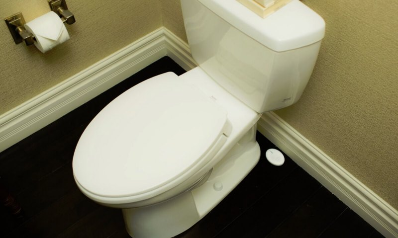 Roost can detect a leak around your toilet.