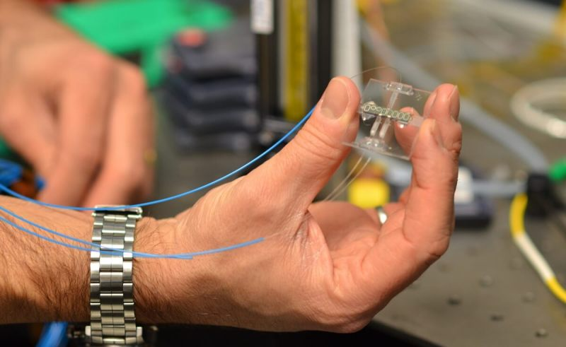 "In the next five years, networks of sensors like this miniature silicon chip trace-gas spectrometer will help us ""see"" and manage environmental pollutants. This sensor design uses IBM's expertise in silicon photonics to detect methane with infrared light brought in via optical fibers."