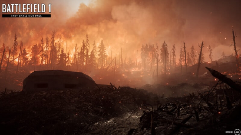 Verdun's forest is burning in They Shall Not Pass.