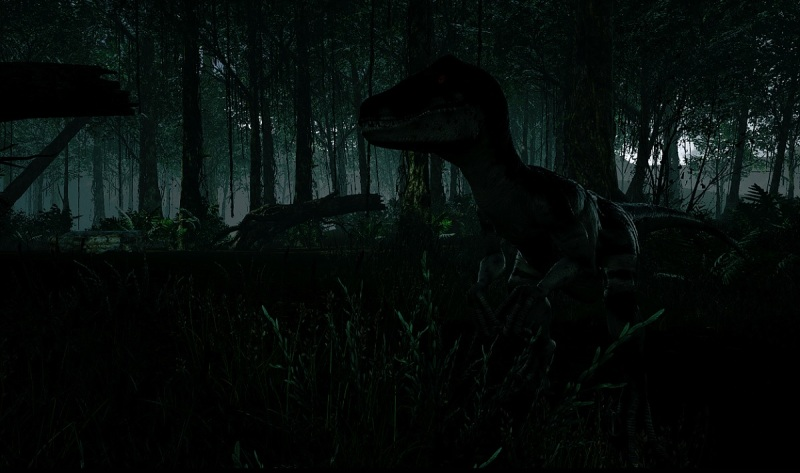 A raptor in the darkness in Island 359.