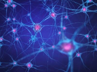Understanding the limits of deep learning   VentureBeat