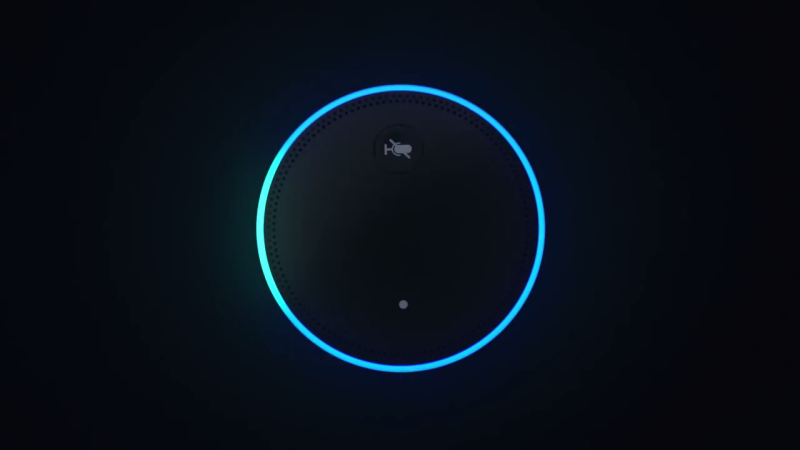 This is a picture of the top of an Amazon Echo