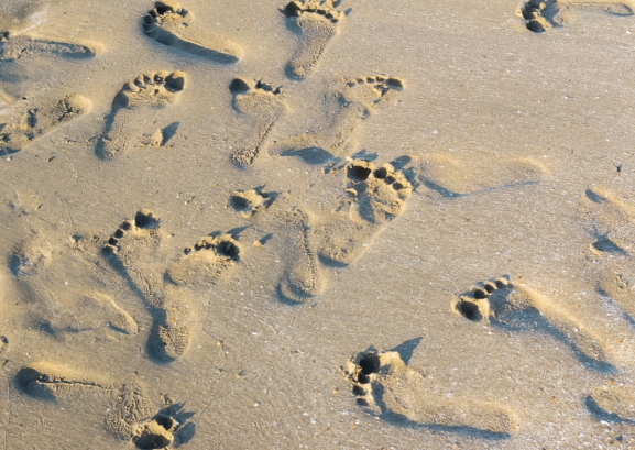 Researchers train AI to identify people from their footsteps