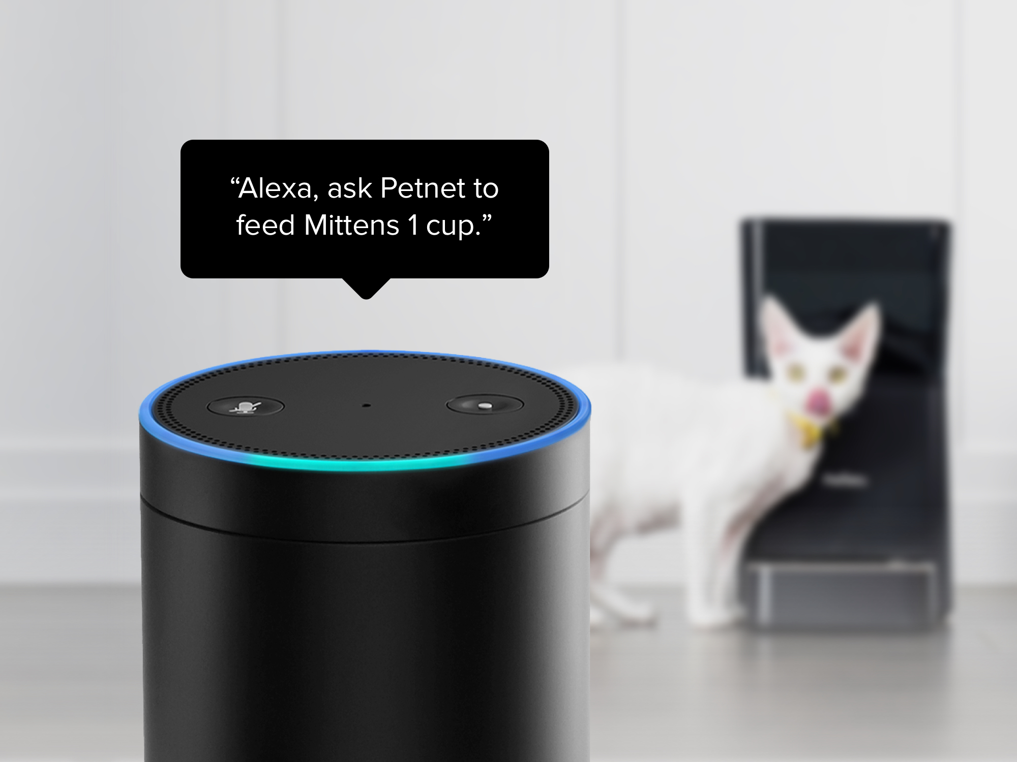 Microsoft shows off Alexa-Cortana integration, launches sign-up website for news
