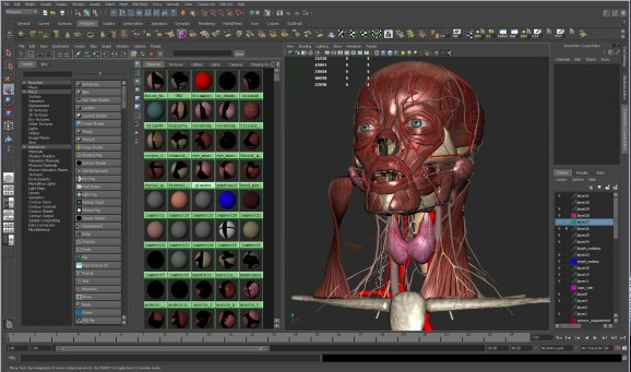 Vr Transforms Health Care 3d Human Model Coming To A School Near