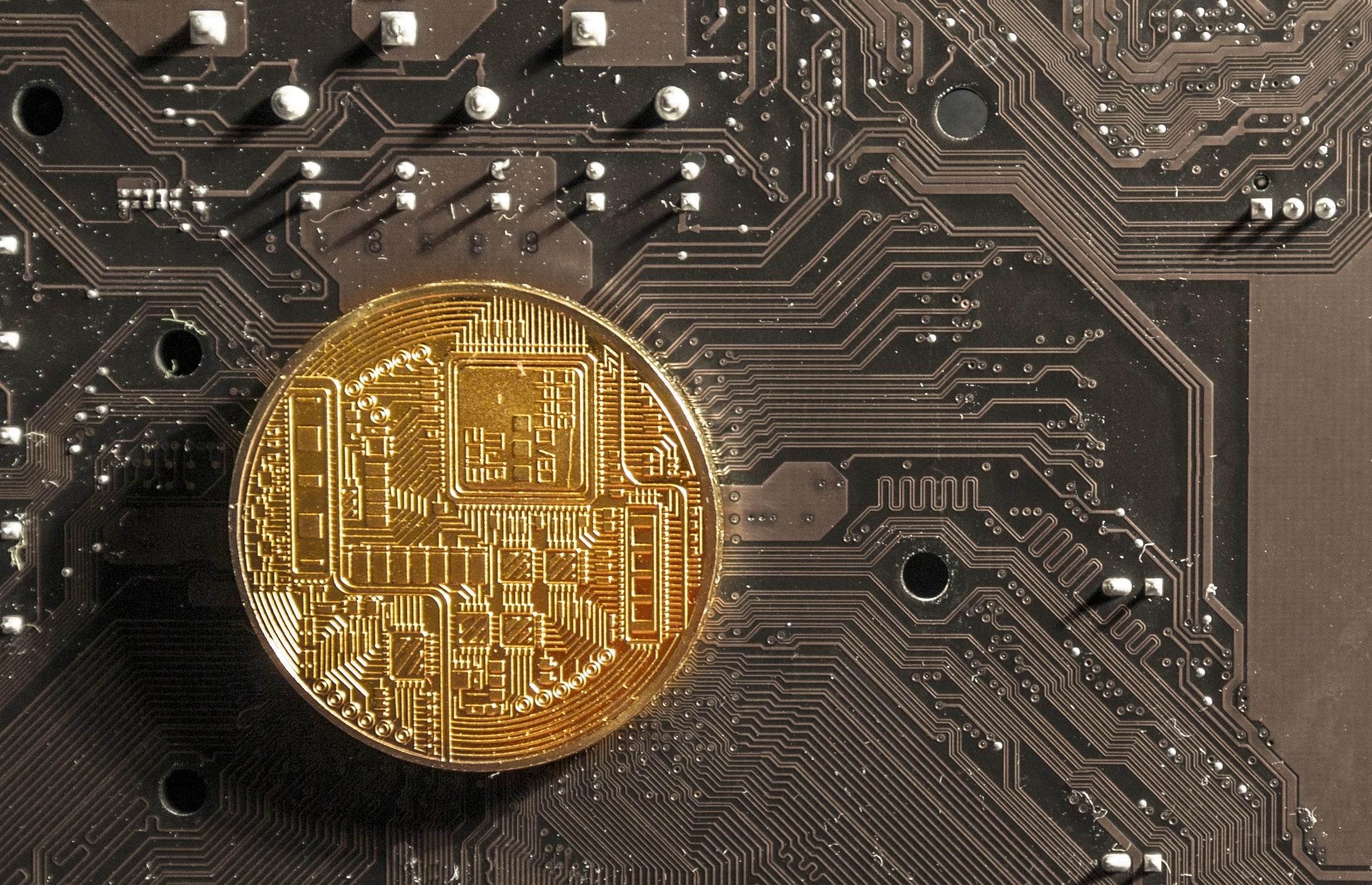 bitcoin server farm
