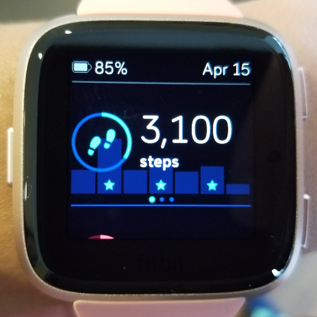 Ionic versus Versa: Which Fitbit smartwatch is for you