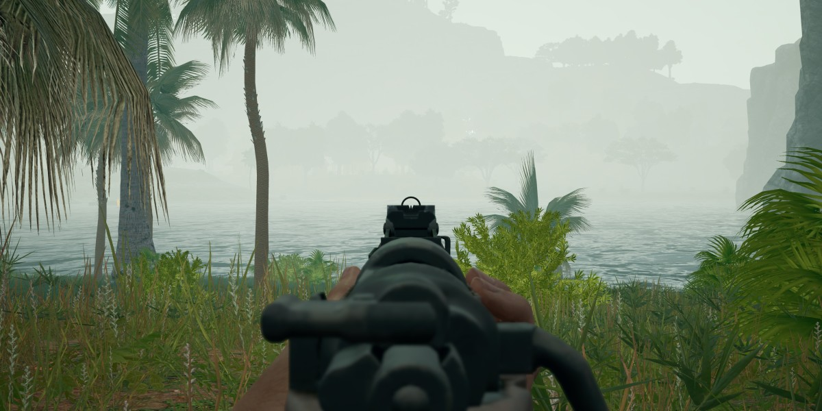 Fog in a match on Savage.