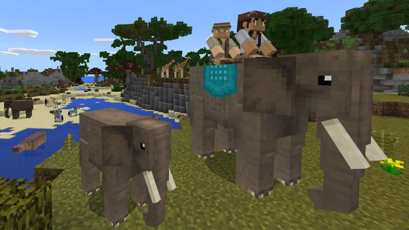 3.  Wildlife: Savanna