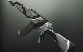 The AKM with the Shroud skin.